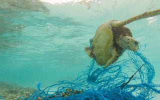 Strategic solutions to deal with global deluge of plastic pollution