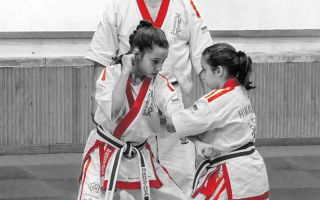 Youth Development through Martial Arts: An Evaluation Framework for Youth Activities