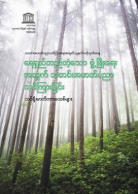 Teaching journalism for sustainable development: new syllabi (Myanmar Vesion)