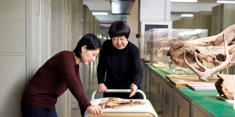 Pioneering Chinese palaeontologist among Asia-Pacific L'Oréal for Women in Science honourees